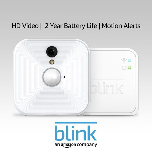 Blink Motion Activated Security Camera - Motion Activated Security Cameras