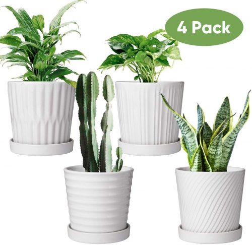 3. Flower Pots,6 Inch Succulent Pots with Drainage