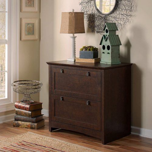 5. Bush Furniture Buena Vista Cabinet