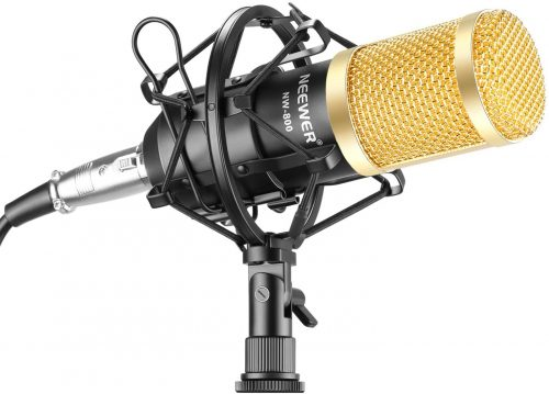 Neewer NW-800 Professional Studio Broadcasting | Cheap Microphones